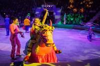 Туляков приглашают на новогоднее представление «Ёлка в цирке», Фото: 42