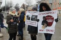Более 8000 туляков требуют запретить убийство бездомных животных, Фото: 35