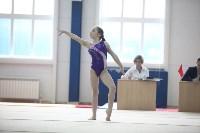 Соревнования по спортивной гимнастике на призы Заслуженных мастеров спорта , Фото: 33