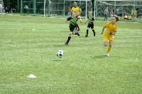 День массового футбола в Туле, Фото: 81