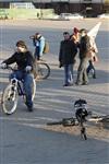 Велосветлячки в Туле. 29 марта 2014, Фото: 38