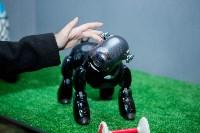 Планета роботов, Фото: 49