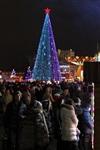 Ёлка на площади Ленина. 25 декабря 2013, Фото: 14