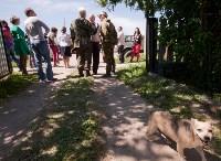 Останки бойцов в деревне Криволучье, Фото: 40