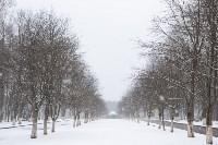 Мартовский снег в Туле, Фото: 3