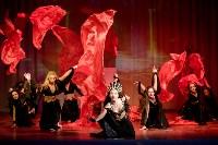 В Туле показали шоу восточных танцев, Фото: 141