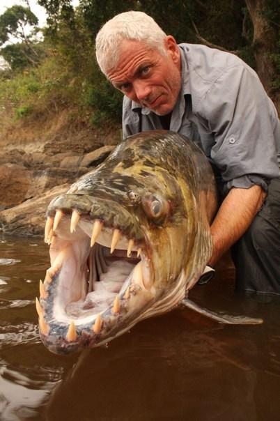 Лучший рыбак, вот это рыба мечты