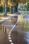 Золотая осень в Тульской области, Фото: 51