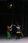 В Тульском цирке прошла премьера аква-шоу, Фото: 29