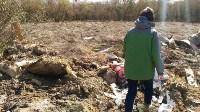 В Туле на берегу Тулицы обнаружен незаконный мусорный полигон, Фото: 11