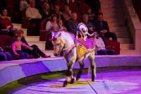 """""""Тайна пирата"""" в Тульском цирке, Фото: 42"""