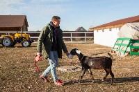 Семён Яблоновский и его ферма, Фото: 8