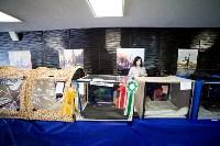 Выставка кошек. 4 и 5 апреля 2015 года в ГКЗ., Фото: 93