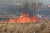 """Возгорание сухой травы напротив ТЦ """"Метро"""", 7.04.2014, Фото: 30"""
