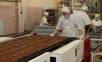 Алексей Дюмин посетил фабрику «Ясная Поляна», Фото: 1