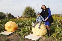 Гигантские тыквы из урожая семьи Колтыковых, Фото: 28