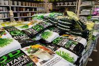 Какие семена выбрать и как правильно ухаживать за рассадой, Фото: 70