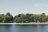 Летний день в богородицком парке, Фото: 56