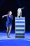 Цирковое шоу, Фото: 59