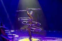 Шоу фонтанов «13 месяцев» в Тульском цирке – подарите себе и близким путевку в сказку!, Фото: 51
