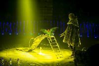 Шоу фонтанов «13 месяцев» в Тульском цирке – подарите себе и близким путевку в сказку!, Фото: 29