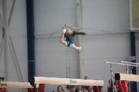 Соревнования по спортивной гимнастике на призы Заслуженных мастеров спорта , Фото: 49