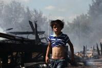 Пожар в Плеханово 9.06.2015, Фото: 38