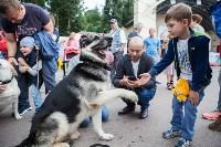 Школодром-2017, Фото: 316