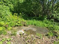 Жители поселка Октябрьский: «С автостанции «Северной» в наш пруд текут грязные стоки» , Фото: 13
