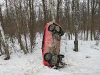 Под Тулой Opel «залез» на дерево, Фото: 2