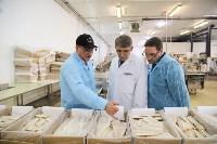 Дмитрий Миляев посетил предприятие по производству замороженной рыбы и полуфабрикатов, Фото: 17
