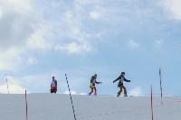 """""""Весенний Загар-2015"""" (горные лыжи, сноуборд), Фото: 25"""