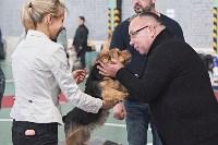 Выставка собак в Туле 26.01, Фото: 57
