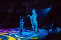 Туляков приглашают на новогоднее представление «Ёлка в цирке», Фото: 79