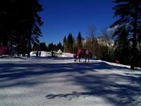 Фотовпечатления тульского волонтера в олимпийском Сочи, Фото: 31