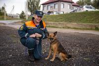Испытания кинологов в Тульском спасательном центре, Фото: 36