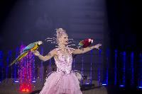 Шоу фонтанов «13 месяцев» в Тульском цирке – подарите себе и близким путевку в сказку!, Фото: 21