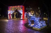 Тулу начали украшать к новому году, Фото: 6