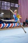 Соревнования по художественной гимнастике 31 марта-1 апреля 2016 года, Фото: 60