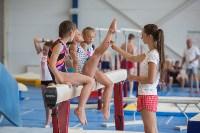 Тульские гимнастки готовятся к первенству России, Фото: 48