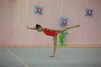 IX Всероссийский турнир по художественной гимнастике «Старая Тула», Фото: 41