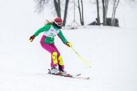 Третий этап первенства Тульской области по горнолыжному спорту., Фото: 29