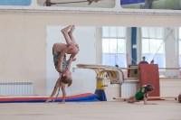 Тульские гимнастки готовятся к первенству России, Фото: 18