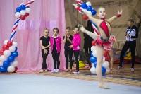 Соревнования по художественной гимнастике 31 марта-1 апреля 2016 года, Фото: 42