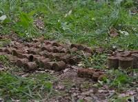 В лесу под Тулой поисковики нашли тайник с гранатами, Фото: 15