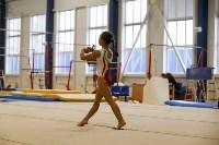 Спортивная гимнастика в Туле 3.12, Фото: 137