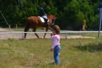 В Ясной поляне стартовал турнир по конному спорту, Фото: 93