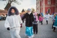 В Тульском кремле открылась новогодняя елка, Фото: 17