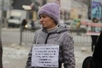 Более 8000 туляков требуют запретить убийство бездомных животных, Фото: 29