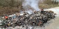 Столичный мусор в Тульской области, Фото: 8